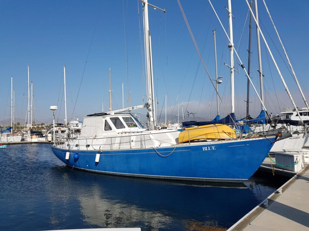 Blue in der Marina in Ensenada