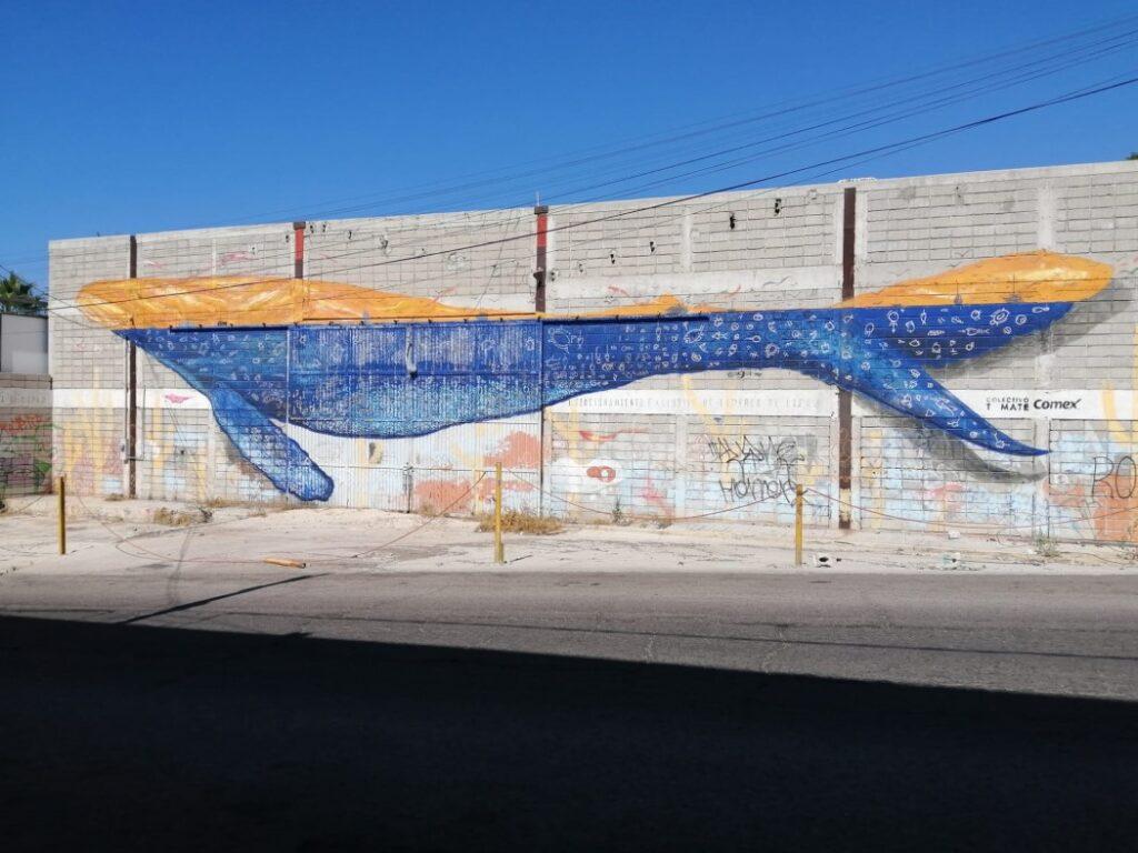 Whale Mural in La Paz