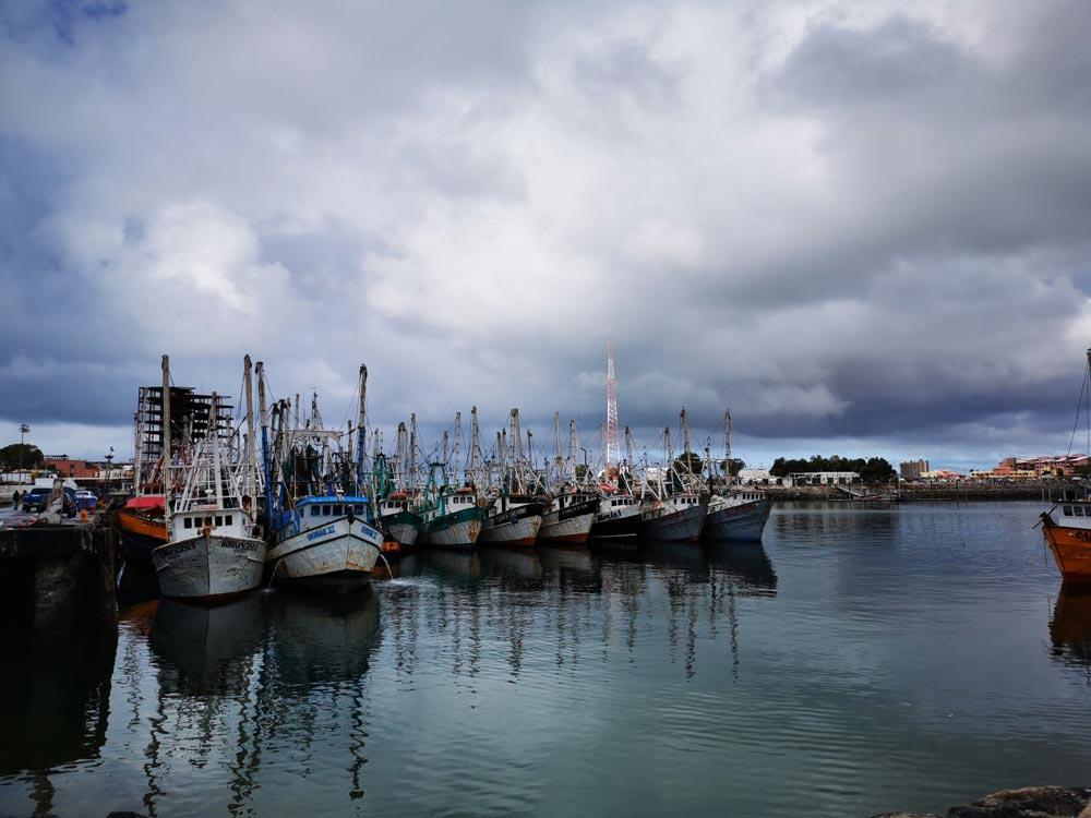 Shrimpers in Puerto Peñasco, Rock Point, harbour