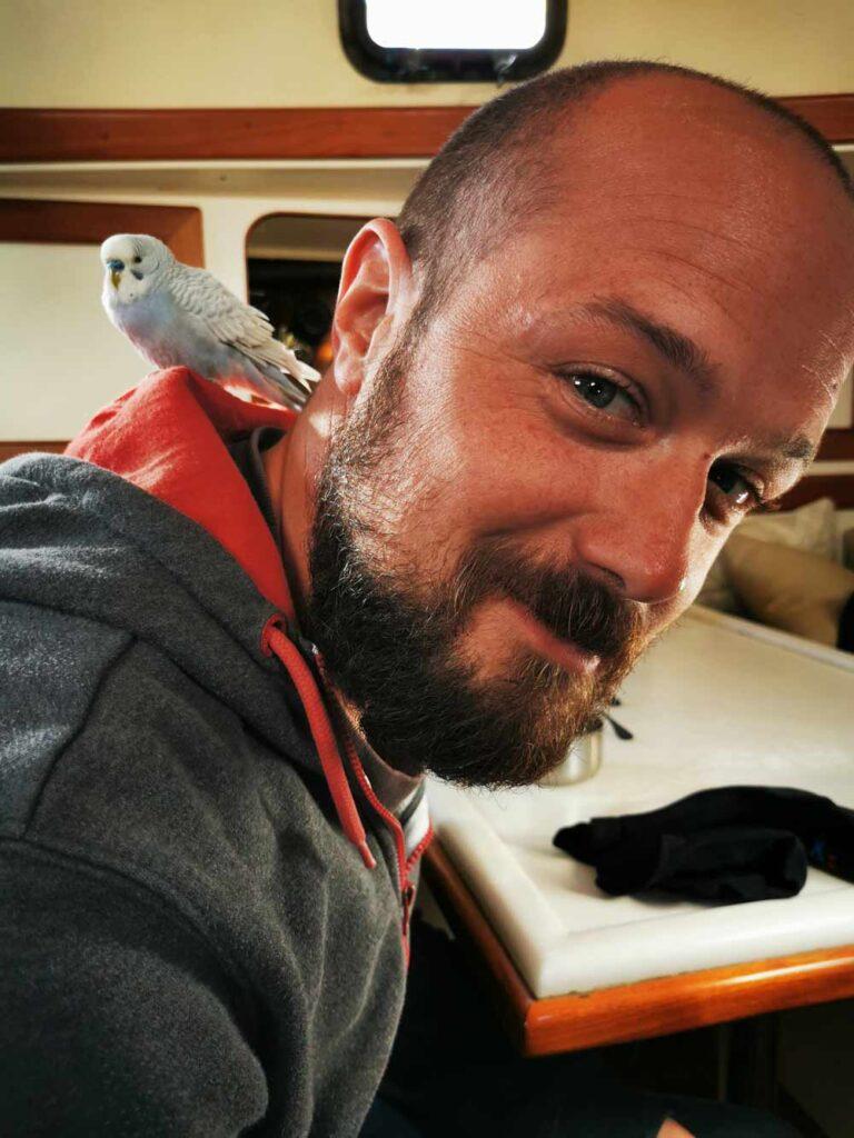 Perruche assise sur l'épaule de Dave