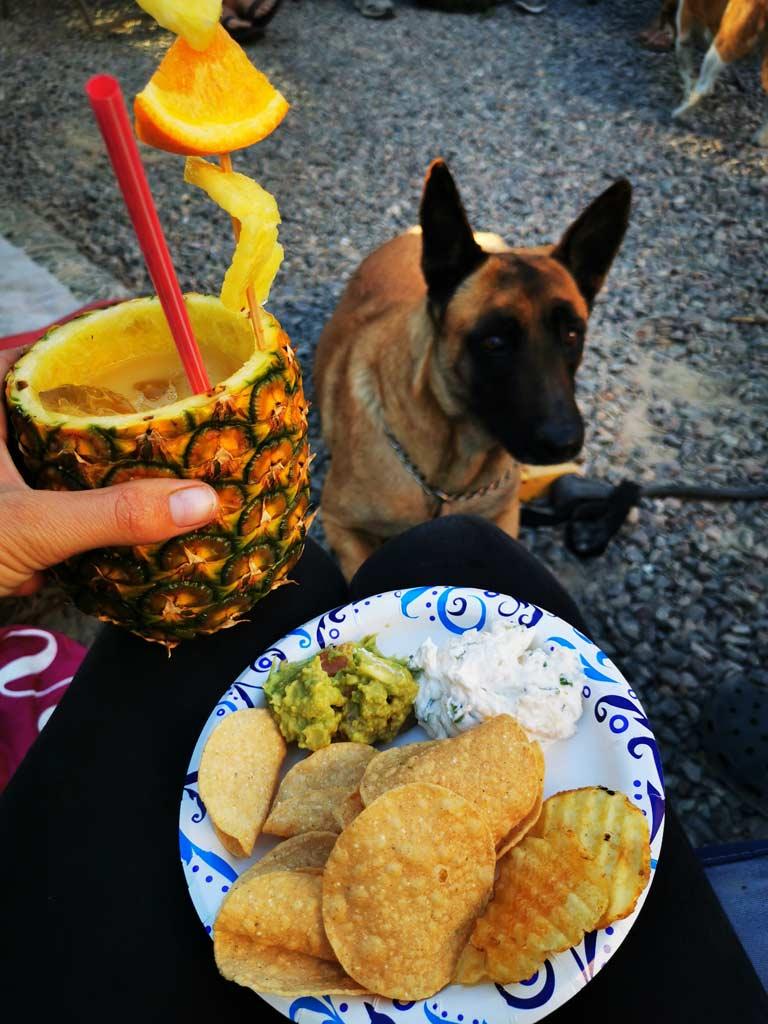 Bonita, Cocktail de ananas