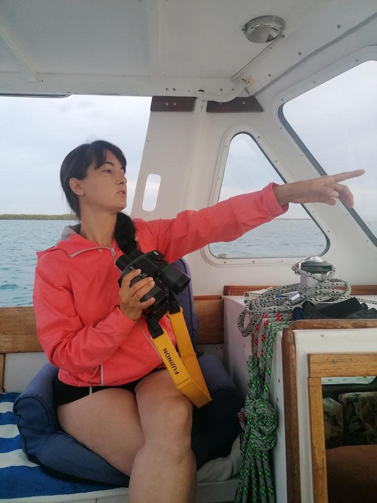 Seglerin navigiert den Kanal von La Paz in der Sea of Cortez